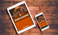 E-book: Bitcoin e Blockchain